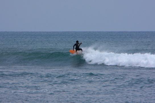 160313Nガ浜02.JPG