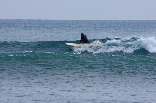 160313Nガ浜05.JPG