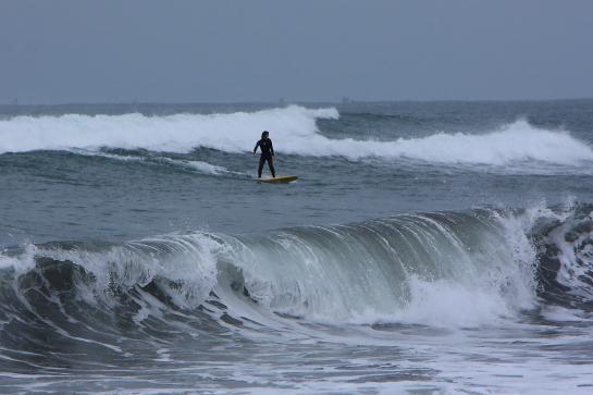 160320Nガ浜03.JPG
