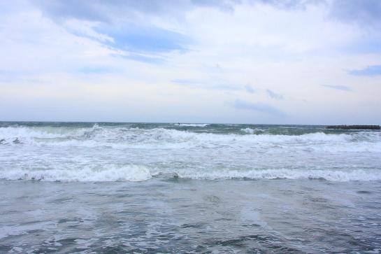 160625ビーチパーク11.JPG