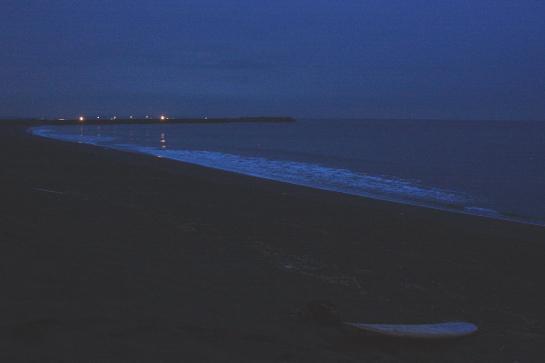 160811ビーチパーク00.JPG