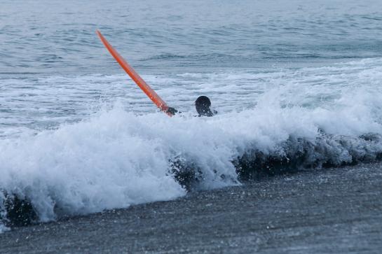 161225ビーチクリン13.JPG