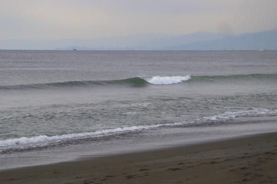 170311Sガ浜14.JPG