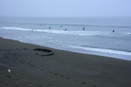 170513Sが浜03.JPG