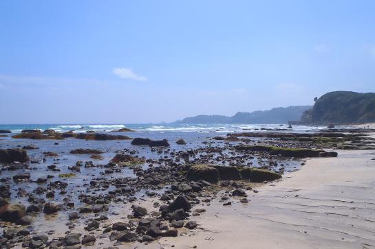 170909伊豆ヒリゾ浜11.JPG