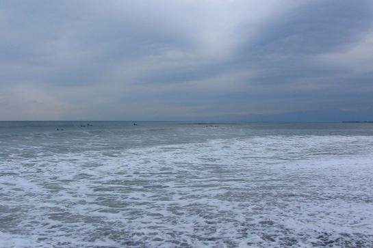 20150307袖が浜010.JPG