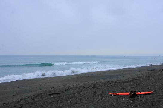 20150405Sヶ浜003.JPG