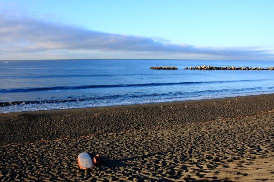 160730ビーチパーク01.JPG