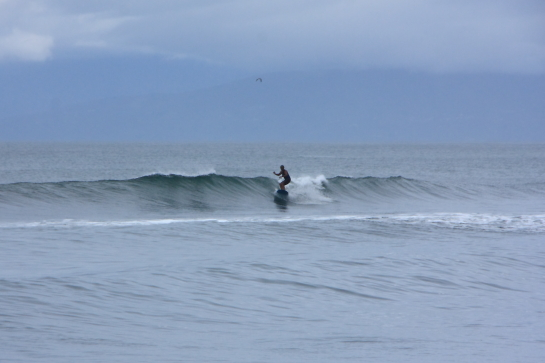 160820Sガ浜05.JPG