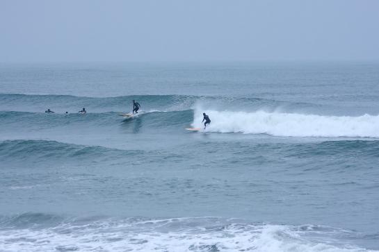170409Sガ浜10.JPG