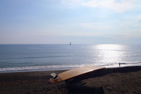 180121Sガ浜37.JPG