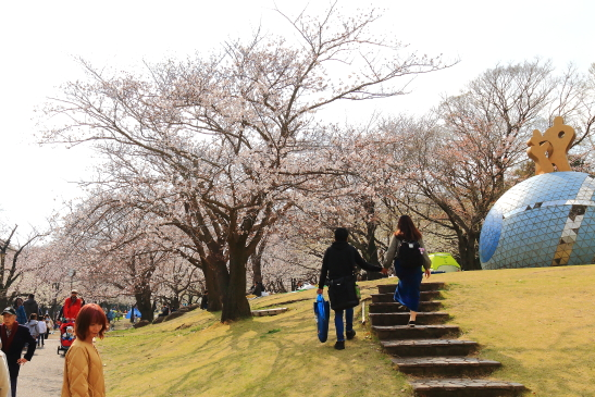 IMG_8324180331平塚総合公園の桜.JPG